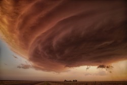 The Pink Storm by Alexnder Fisher