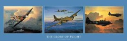 The Glory of Flight by William S Phillips