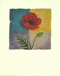 Poppy of Colour by Julia Hawkins