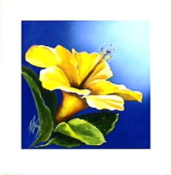 Sunny Hibiscus by Karen Foley