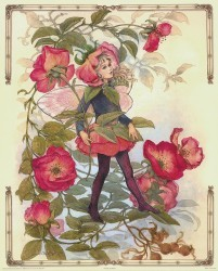 The Rose Fairy by Joy Scherger
