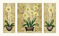 Flowers Triptych B by Urpina