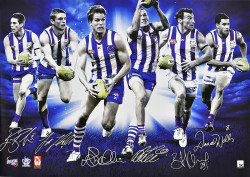 North Melbourne Stars