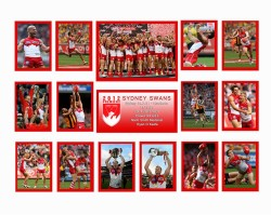Sydney Swans 2012 Premiers Limited Edition of 500