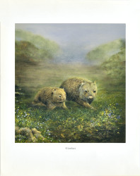 Wombats by Josephine Anne Smith