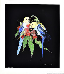 Pale Headed Rosellas by Catherine Carpenter