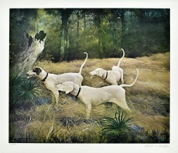 Hunting Dogs by Robert M Rucker