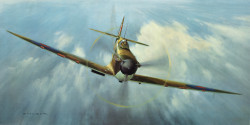 Spitfire Magic by Gerald Coulson