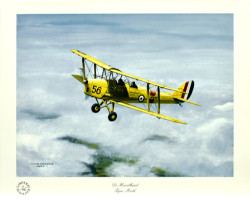 De Havilland Tiger Moth by Colin Parker