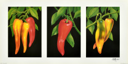 Triptych, Chilies by Andrew Patsalou