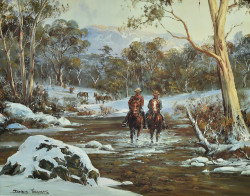 Searching for Brumbies by James Thomas