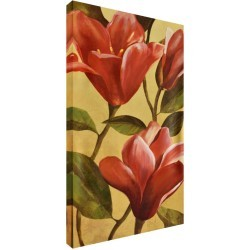 Honeysuckle by Stretched Canvas