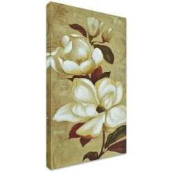 Southern Magnolia II by Stretched Canvas