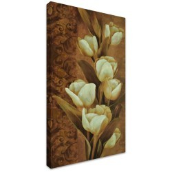 Chinese Magnolia by Stretched Canvas