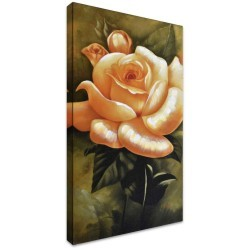 Garden Rose II by Stretched Canvas
