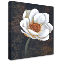 White Magnolia on Brown by Stretched Canvas