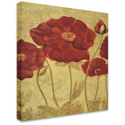 Red Poppies by Stretched Canvas