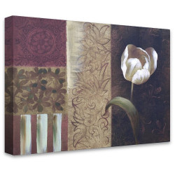 Tulipa by Stretched Canvas