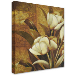 Tulips Closed by Stretched Canvas