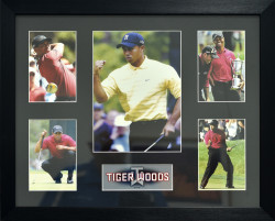 Tiger Woods (5 opening)
