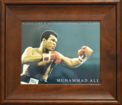 Float Like a Butterfly Sting Like a Bee - Muhammad Ali