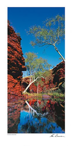 Outback Reflection