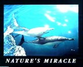 T08-Nature s Miracle (Dolphins)